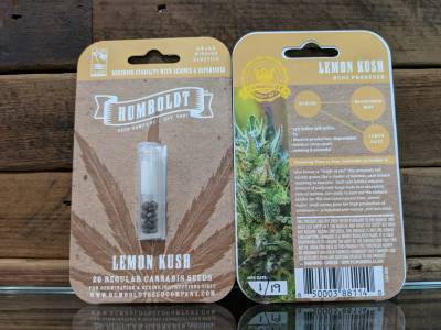 Dispensary Ukiah marijuana Humboldt seed co lemon Kush 20 regular seeds